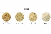 かどや米穀店分づき米の説明